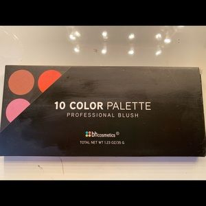 BH cosmetic 10 blush palette